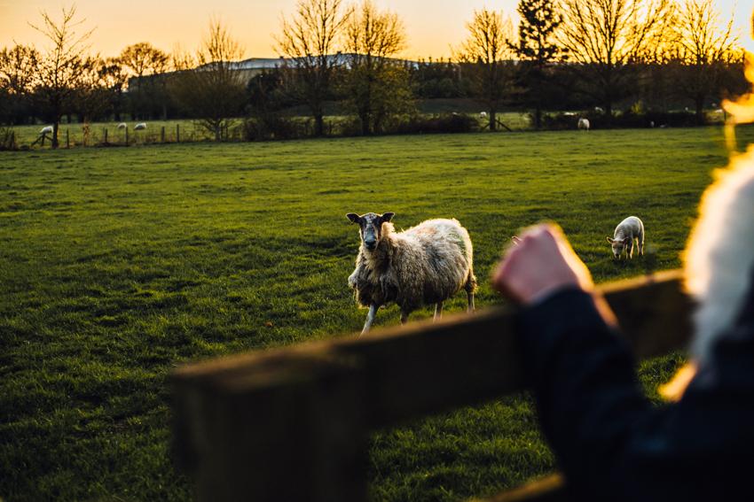 michellewoodphotographer-the tythe barn-blog-K&G-65