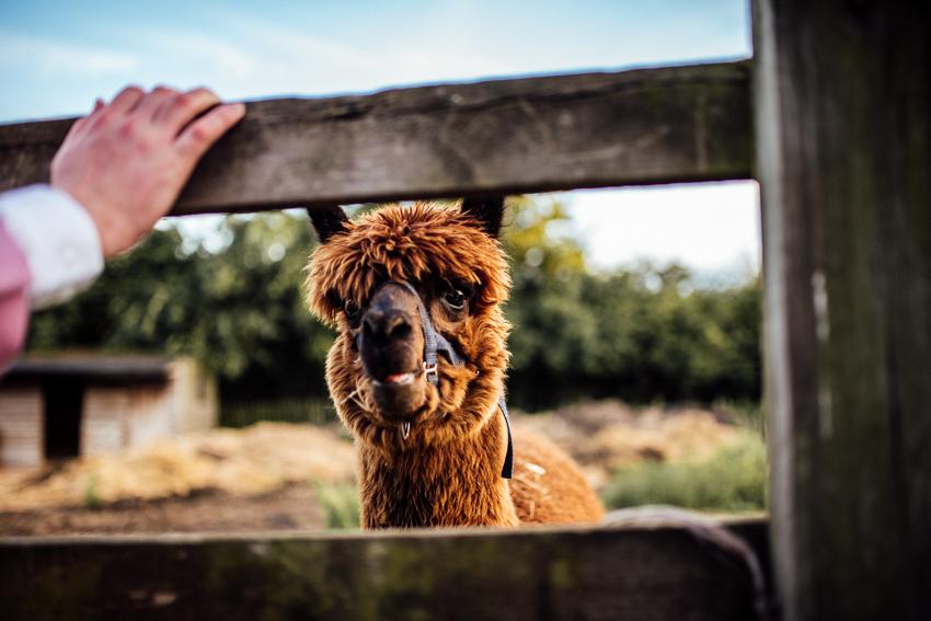 michellewoodphotographer-kent life- emma&jimmy blog-1082
